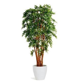 Ruscus kunstplante med krukke