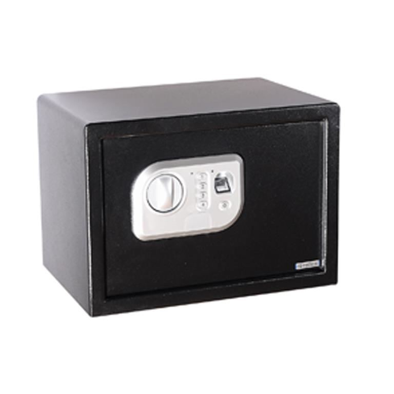 Fingerprint security safe
