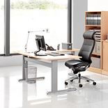 """Flexus"" Height adjustable desk, L shape"