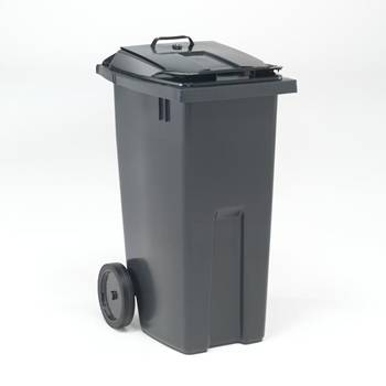 Wheelie bin with two-way access