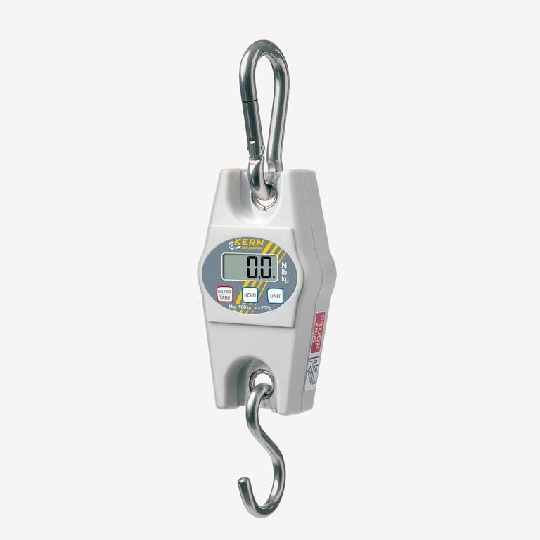 Electronic suspended scales